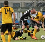 SK Dynamo ČB - FK Baník Sokolov 1:1