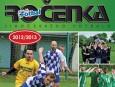 Ročenka 2012/13: Sestup Dynama ČB a Písku. Dražice podruhé šampionem