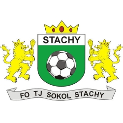 Sokol Stachy