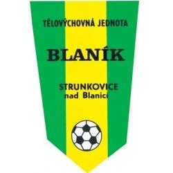 Blaník Strunkovice